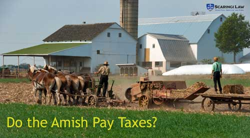 Amish farmers working in a field.